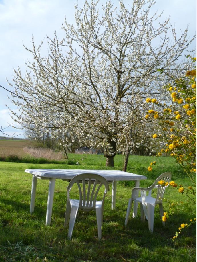 Le jardin en avril